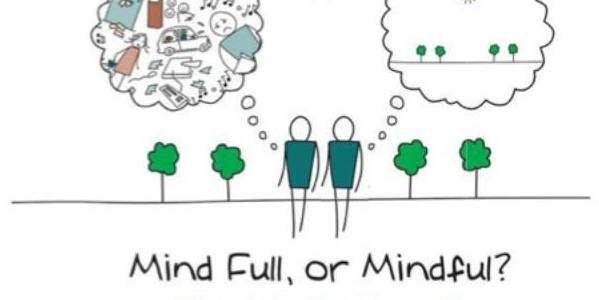 Curso de mindfulness, meditación